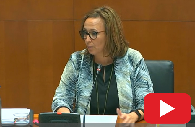 ARAGÓN: La consejera Mayte Pérez anuncia la instalación del control de acceso en salones durante la Comisión de Hacienda