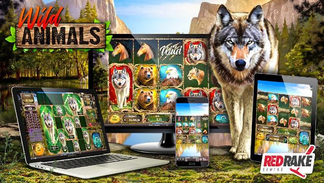 Wild Animals, el último estreno de Red Rake Gaming