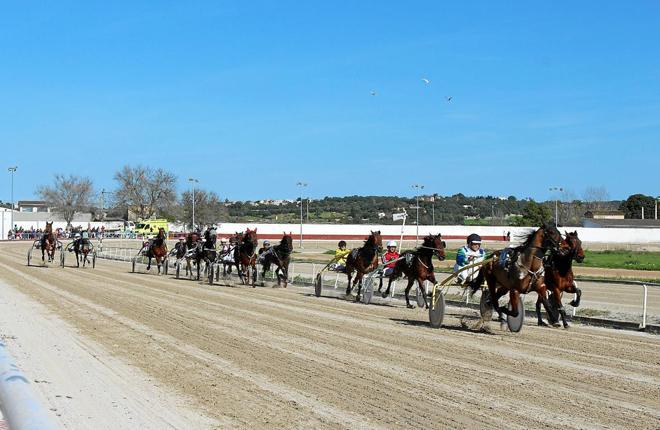 La Federación Balear de Trote y Zeturf acuerdan ofrecer apuestas en todas las carreras de caballos que se celebren en los hipódromos de Son Pardo y Manacor